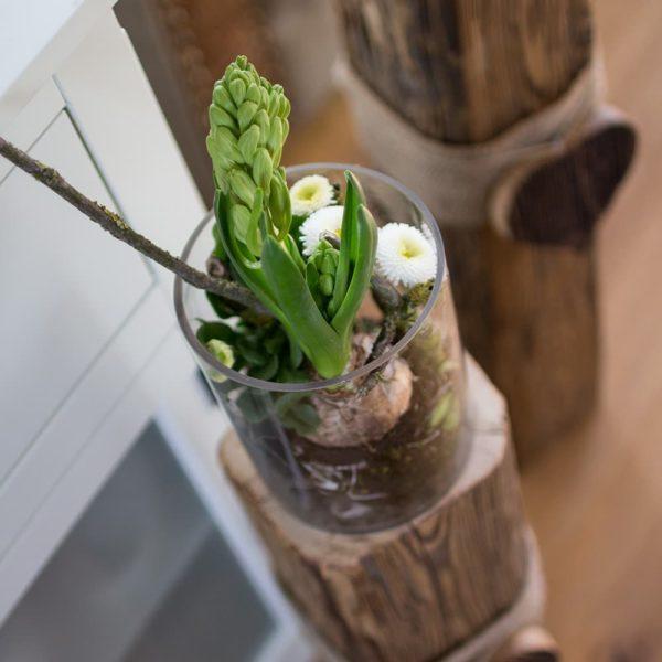 Gläser auf Altholzbalken mit Frühlingsblumen